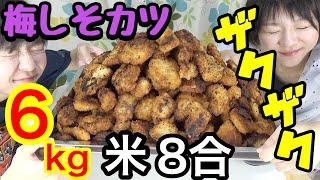 【大食い】ザクザクの梅しそカツ6kg +ご飯8合!!【双子】 thumbnail