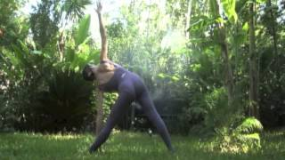 Gently Into Power Yoga Class with Ron Stewart