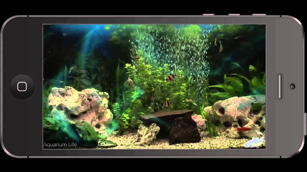 Aquarium Life App : For iPhone, iPad & iPod Touch
