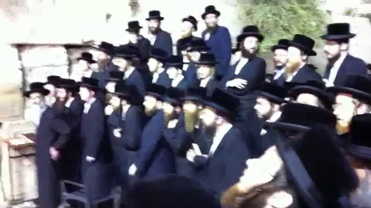 חסידות ויזניץ בשירה בכותל המערבי  , האדמו״ר מויזניץ