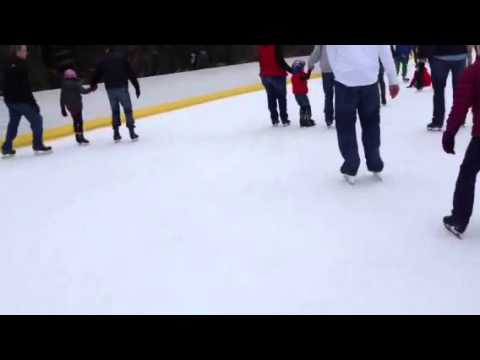 Wollman rink getting stopped by the skating police