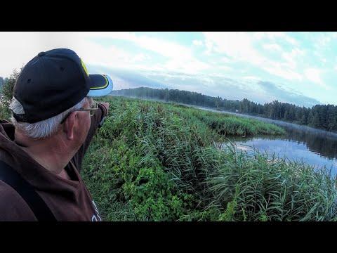Рыбалка на канале им.Москвы. Июль 2016. Солитерный лещ