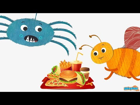 Why is junk food unhealthy? – Ask Coley – Health Tips for Kids | Educational Videos by Mocomi