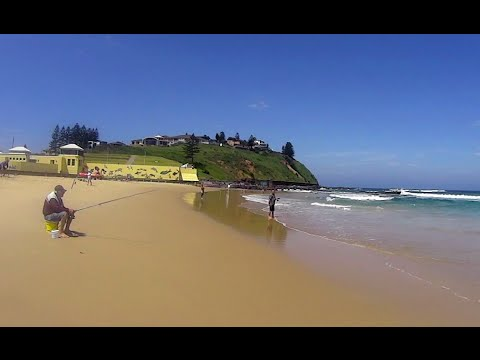 Virtual Treadmill Walk - Port Kembla Beach, NSW Australia