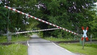 Spoorwegovergang Badbergen (D) // Railroad crossing // Bahnübergang