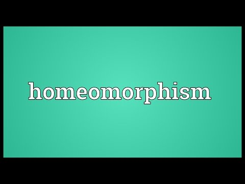 Homeomorphism Meaning