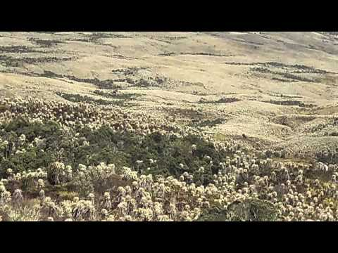 Nevado Del Ruiz Tours Video
