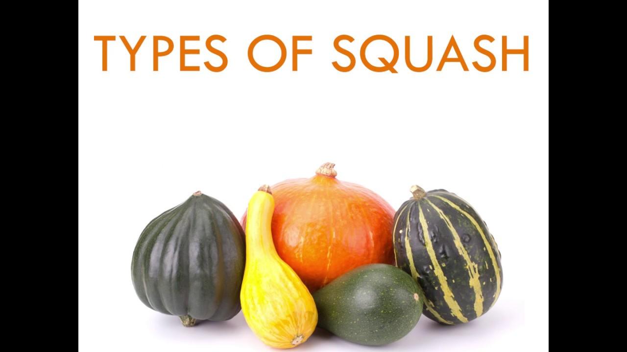 Types Of Squash - Youtube-4714