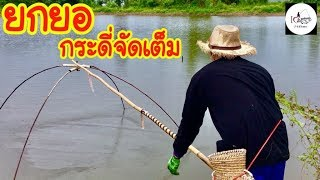 ยกยอ ปลากระดี่นาง Fishing lifestyle Ep.149