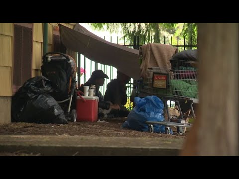 Most Homeless People On Multnomah County Streets In A Decade, Annual Count Shows