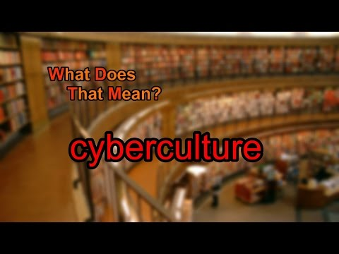 What does cyberculture mean?