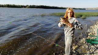 ОНА ОПЯТЬ ВСЕХ ПЕРЕЛОВИЛА  Рыбалка летом на Дону
