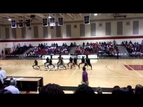 Barry University Dance Team