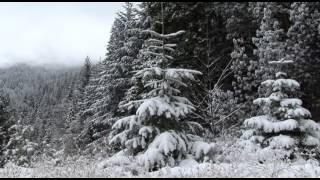 Dan Pope Certified Broadcast Meteorologist Report Cascade Snowfall