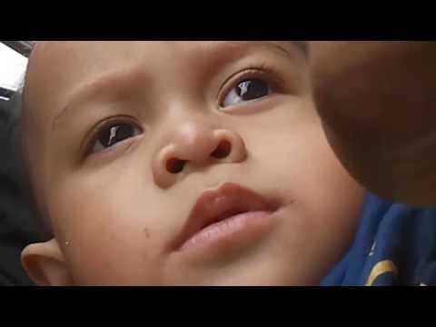 Naik delman | lagu anak-anak