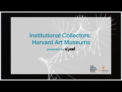 Institutional Collections: Harvard Art Museums