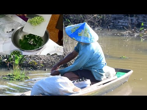 Catching Shellfish in river and cook Laos Food