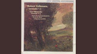 Serenade No. 3 in D Minor, Op. 69: III. Andante affetuoso - Andante espressivo