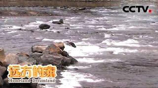 《远方的家》 20200515 行走青山绿水间 松花江探源  CCTV中文国际