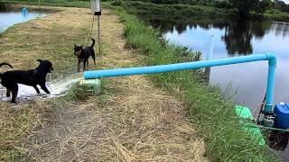 submersible pump IC-43 เติมน้ำระหว่างบ่อ