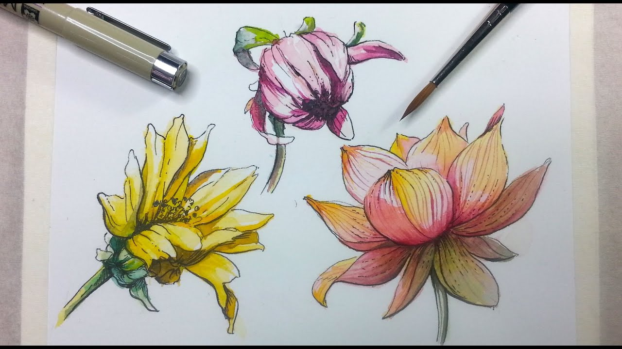 How to Draw & Paint Flowers with Ink and Watercolor Part 2