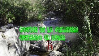 Bosque de la Primavera-Rio de agua caliente | Visitando un lugar