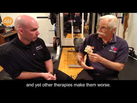 Motions, Postures and Loads - Understanding Hydraulics in Flexion and Extension