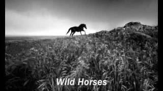 Wild Horses Susan Boyle Piano Karaoke