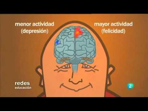 Ciencia y Meditación