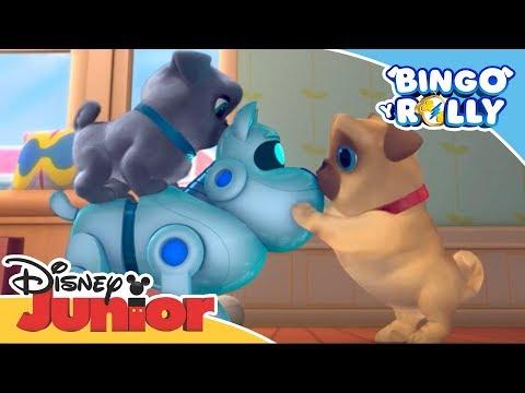 Bingo Y Rolly: A.R.P. A Su Servicio  | Disney Junior Oficial