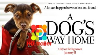 A DOG'S WAY HOME-2019|OFFICIAL MOVIE TRAILER|Bryce Dallas Howard|Ashley Judd|Edward James Olmos