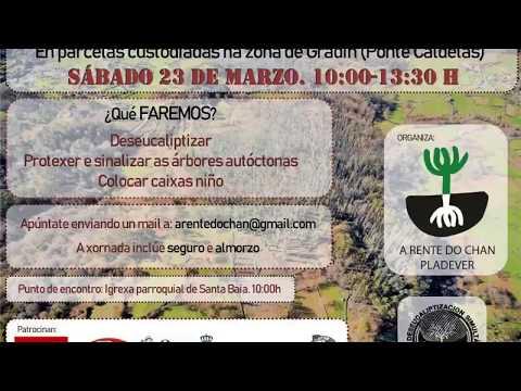 Deseucaliptizacion Ponte Caldelas  23-03-2019 DÍA INTERNACIONAL DE LOS BOSQUES