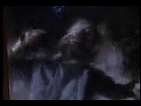 Powermad - Slaughterhouse ( Slaughterhouse music video )