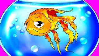 Sprawdź, co zrobić, żeby złota rybka żyła nawet 15 lat