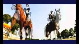Holger Hetzel Sport Pferde Auktion 2010