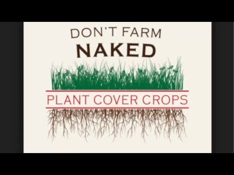 Cover crops farming in 4 minutes...