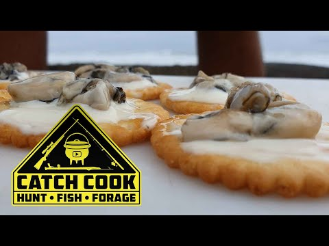 Sun Oysters, Coastal foraging - South Africa | CATCH COOK