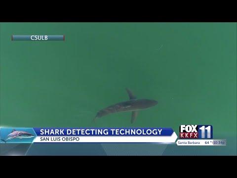 Shark Detecting Technology