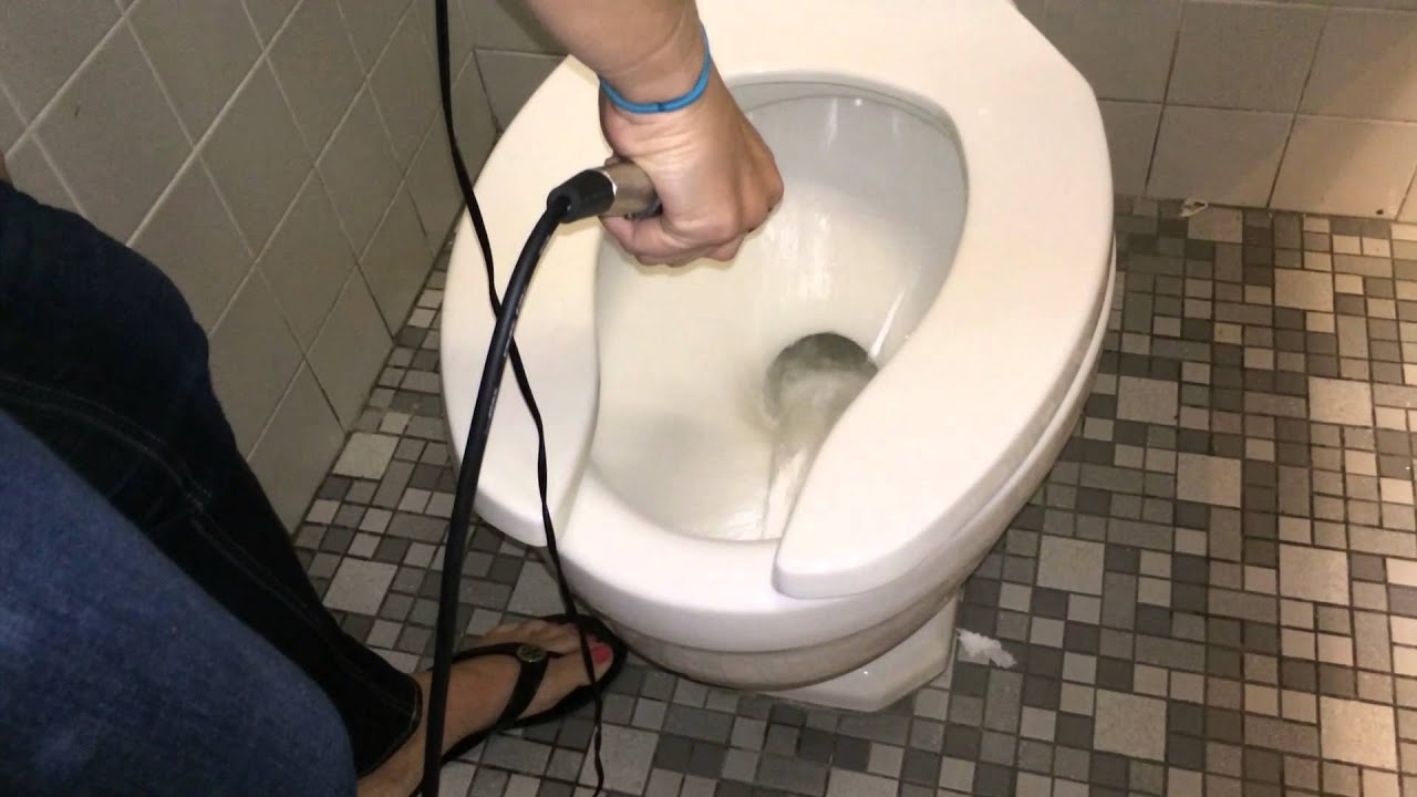will eggs flush the toilet will it flush wednesday