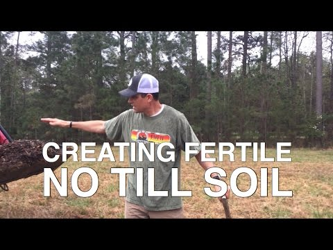 Creating Fertile No Till Soil – A Collaboration with I Am Organic Gardening