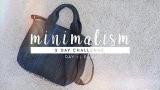 Minimalism Challenge Day 1: Purse | #5DaystoMinimalism