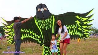 Thả Diều Đại Bàng Khổng Lồ - Big Eagle Kite Flying