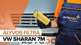 Kaip pakeisti Alyvos filtras VW SHARAN (7M8, 7M9, 7M6) - internetinis nemokamas vaizdo