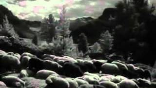 Tiefland (1954) - Fighting the wolf