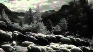 Tiefland (1954) - Fighting the wolf
