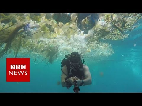 Bali: Diver films 'horrifying plastic cloud' - BBC News