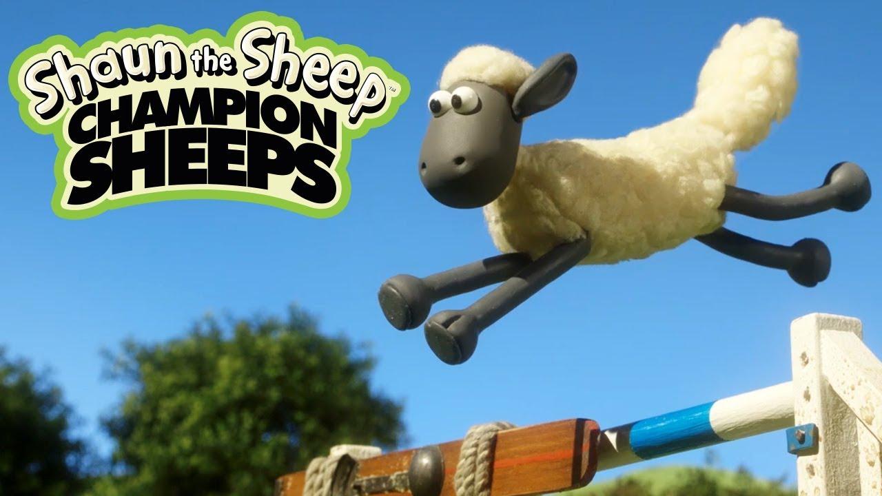 Chạy vượt chướng ngại | Championsheeps | Những Chú Cừu Thông Minh [Shaun the Sheep]