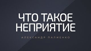 Что такое неприятие Александр Палиенко