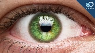 Repeat youtube video Those Eye Floaters Live Inside You!