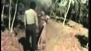 Luku Luku Lagyo Malai   Narayan Gopal   Tara Devi Sindoor